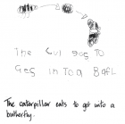 The caterpillar eats to get into a butterfly.