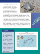 One of the campaign's main aims was satellite tracking. Sea turtles travel huge distances, and although they had...